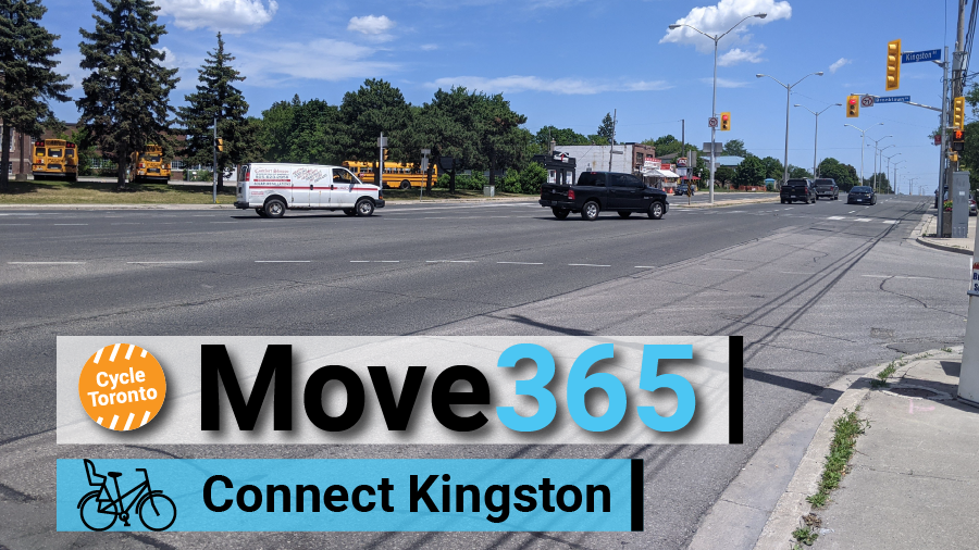 Move365 Connect Kingston