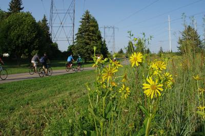 Cycling along the gatineau hydro corridor