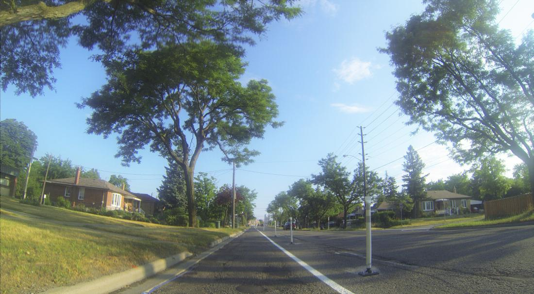 Bollards and a single line of paint separate a bike lane from traffic on a residential street