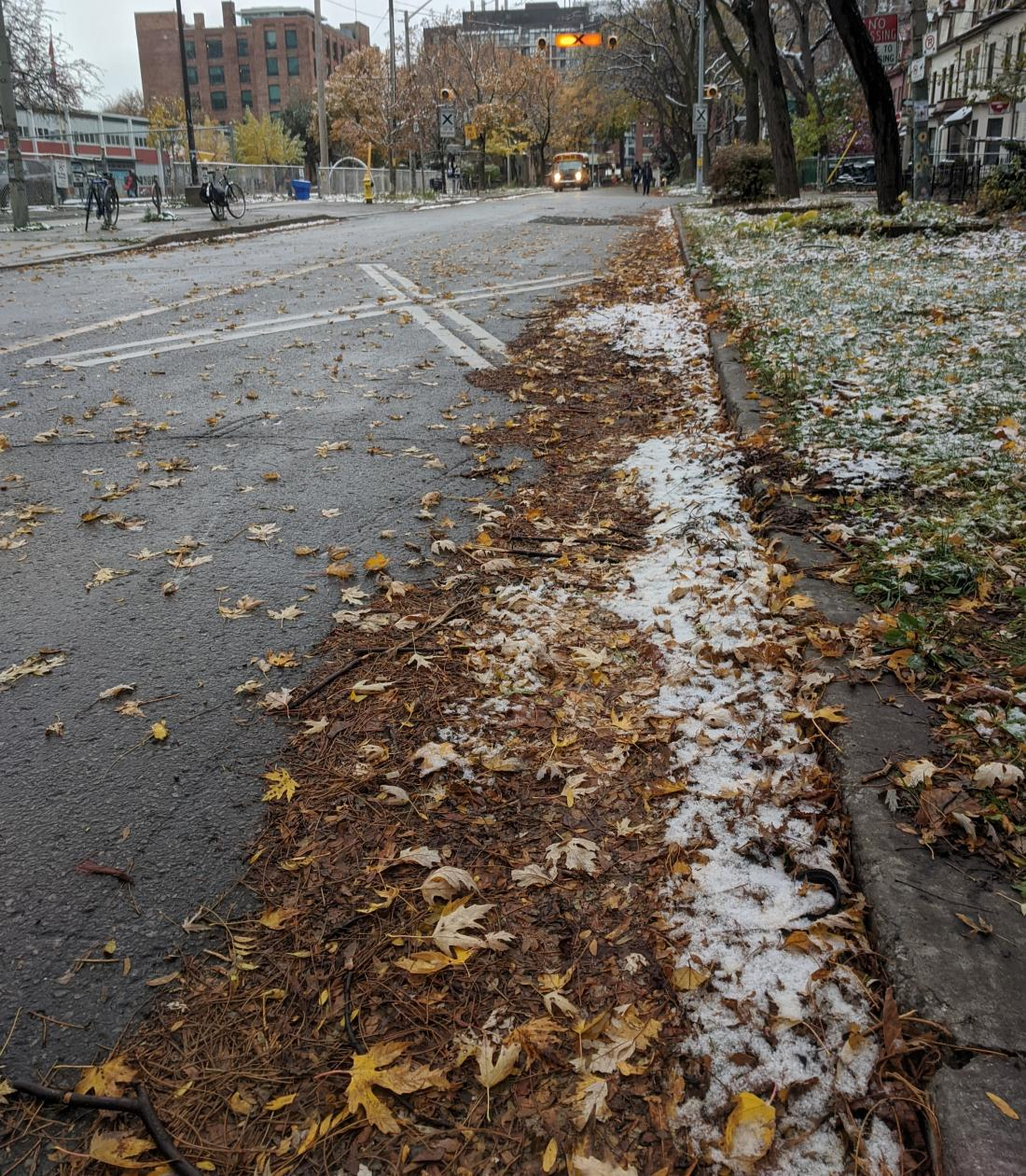 Leaves and snow clogging the edge of a small street.